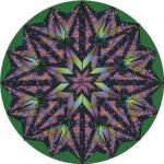 Lauren Caffrey Radial Design